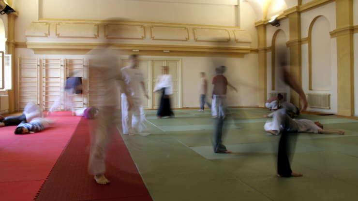Letní škola aikido v Třešti, srpen 2009