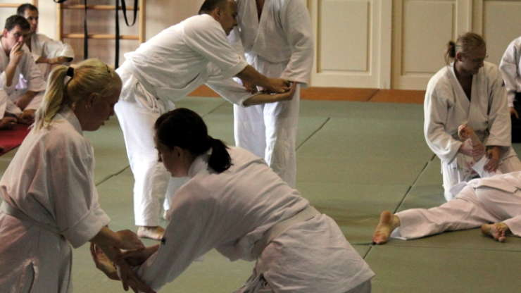 Our aikido summer school 2010