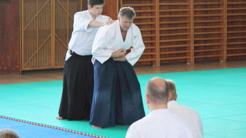 Seminar Jan Nevelius, September 2013