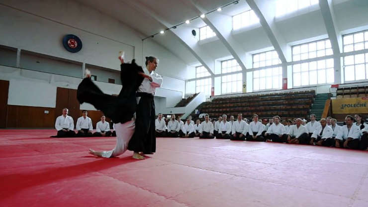 Aikido demonstration of teachers of Czech Federation of Aikido