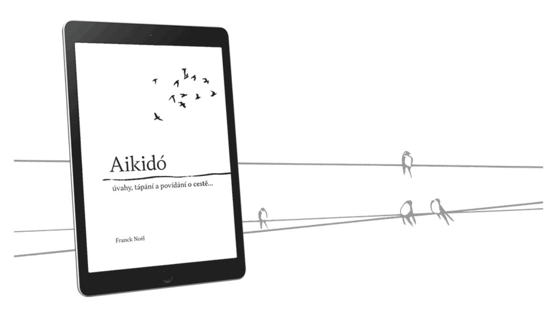 Vydali jsme novou knihu o aikidě